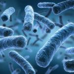 Reaktive Arthritis: Infektion wandert ins Gelenk